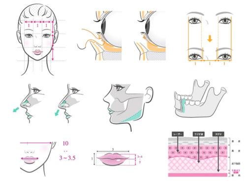 書籍『Dr.高須幹弥が教える 美容整形の教科書』のイラスト